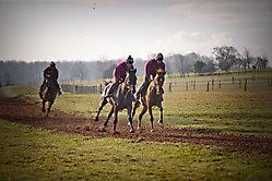 Robin Dickin Racing_2
