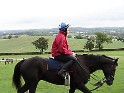 Robin Dickin Racing_4