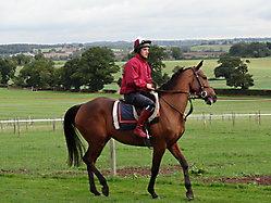 Robin Dickin Racing_5
