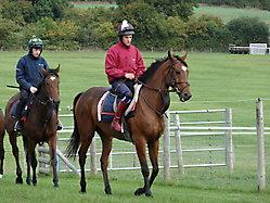 Robin Dickin Racing_6